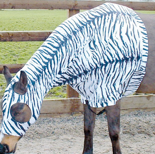 Hoods Vests And Bodysuits Le Beau Cheval